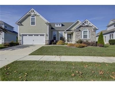 Selbyville Single Family Home Active w/Kick-out: 36482 Wild Rose Circle