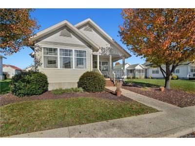 Ocean View Single Family Home For Sale: 7 Avondale