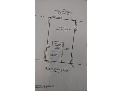Dagsboro Residential Lots & Land For Sale: 34979 Hoot Owl Lane #10