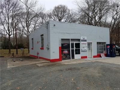 Ellendale Commercial For Sale: 20587 Milton Ellendale Highway