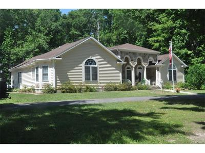 Milton Single Family Home For Sale: 20164 Cool Spring Rd.