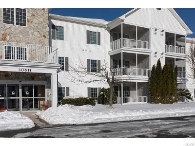 Ocean View Condo/Townhouse For Sale: 30611 Cedar Neck Rd #2208