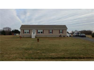 Seaford Single Family Home For Sale: 22149 Conrail
