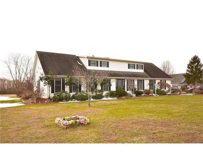 Milford Single Family Home For Sale: 5914 S Rehoboth Ave