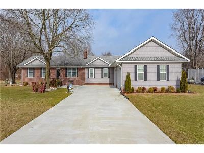 Millsboro Single Family Home For Sale: 217 Irons