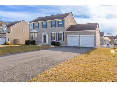 Milford Single Family Home For Sale: 11 W Thrush
