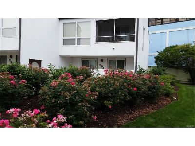 SOUTH REHOBOTH Condo/Townhouse For Sale: 29a Delaware Avenue