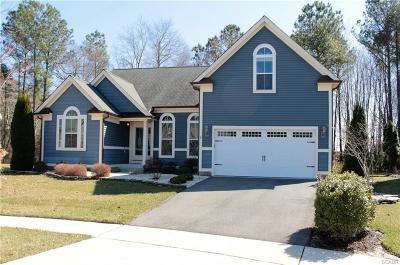 Ocean View Single Family Home For Sale: 36360 Redstart Court