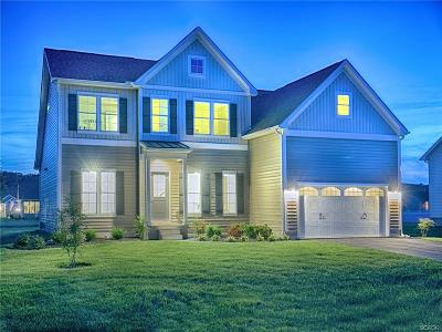 Rehoboth Beach Single Family Home For Sale: 34828 Mute Swan