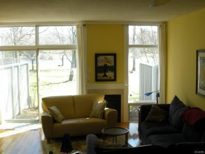 Rehoboth Beach Condo/Townhouse For Sale: 21006 Spring Lake Dr #110