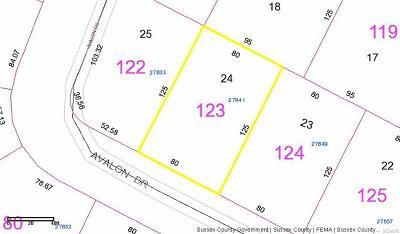 Georgetown Residential Lots & Land For Sale: 27841 Avalon Drive #24-E