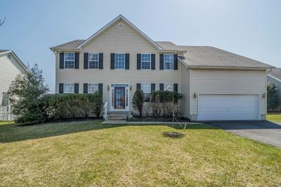 Milford Single Family Home For Sale: 6 Royal Drive