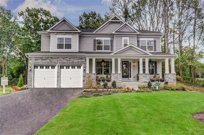 Milford Single Family Home For Sale: 30049 Stage Coach Circle