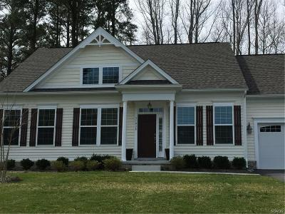 Sussex County Single Family Home For Sale: 38534 Blue Hen