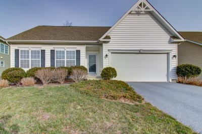 Rehoboth Beach Single Family Home For Sale: 34799 Mute Swan Lane