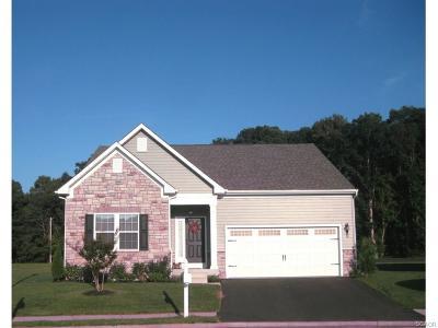 Millsboro Single Family Home For Sale: 449 Tunbridge Court