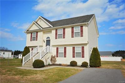Millsboro Single Family Home For Sale: 210 Joanne Drive