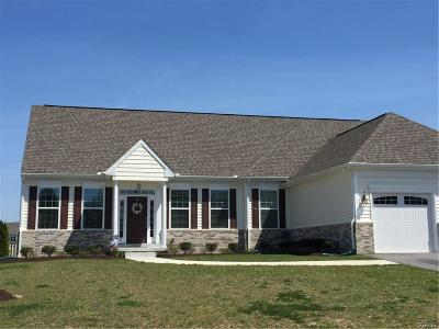 Selbyville Single Family Home For Sale: 38543 Blue Hen