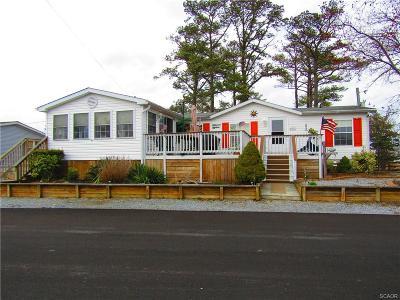 Millsboro Single Family Home For Sale: 25972 Bald Cypress Street