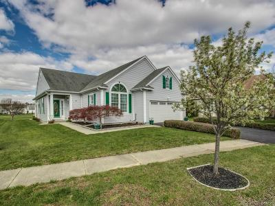Rehoboth Beach Single Family Home For Sale: 3 Haworth Court