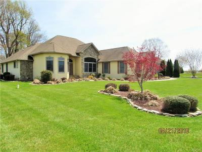 Single Family Home For Sale: 103 Coursey Mill