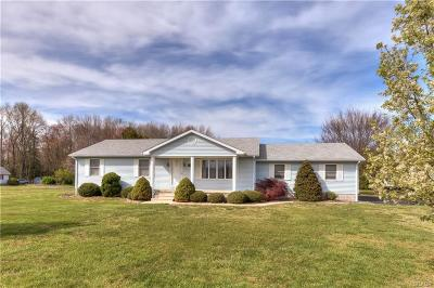Milford Single Family Home For Sale: 899 Paris Kirby Road