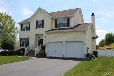 Milford Single Family Home For Sale: 10 E Green Lane