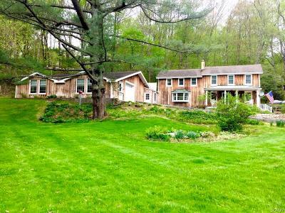 Hockessin Single Family Home For Sale: 2392 Brackenville Rd