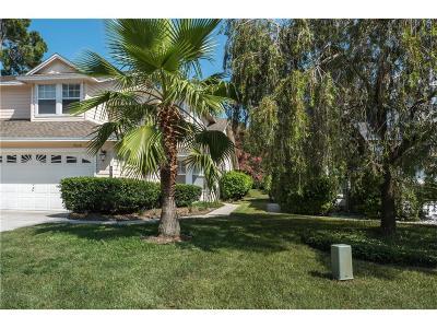 Fernandina Beach Single Family Home For Sale: 95140 Village Drive