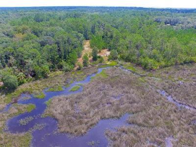 Fernandina Beach FL Residential Lots & Land For Sale: $749,000