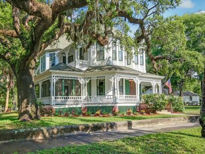 Fernandina Beach Single Family Home For Sale: 121 N 6th Street