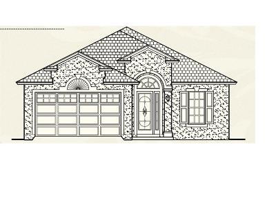 Fernandina Beach Single Family Home For Sale: 2908 N Sea Grape Drive