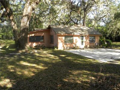 Amelia Island Single Family Home For Sale: 4820 First Coast Highway