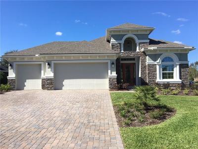 Fernandina Beach Single Family Home For Sale: 95180 Amelia National Parkway