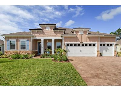 Fernandina Beach Single Family Home For Sale: 96104 Grande Oaks Lane