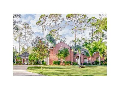 Yulee Single Family Home For Sale: 97012 Laffites