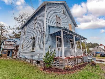 Fernandina Beach Multi Family Home For Sale: 113 S 8th Street