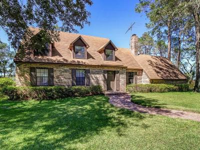 Yulee Single Family Home For Sale: 97459 Blackbeards Way
