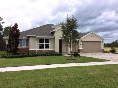 Fernandina Beach Single Family Home For Sale: 85021 Majestic Walk Boulevard