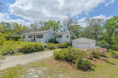 Fernandina Beach Single Family Home For Sale: 101 N 15 Street