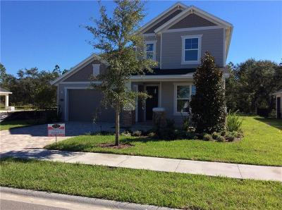Fernandina Beach Single Family Home For Sale: 85311 Champlain Drive