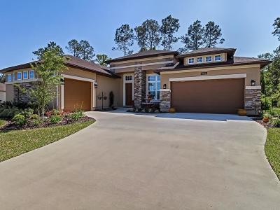Fernandina Beach Single Family Home For Sale: 95038 Sweetberry Way