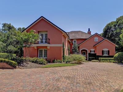 Amelia Island Single Family Home For Sale: 44 Long Point Drive