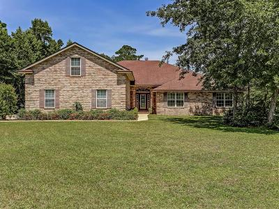 Fernandina Beach Single Family Home For Sale: 95874 Alligator Creek Road