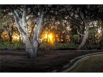 FERNANDINA Residential Lots & Land For Sale: 2925 Riverbend Walk