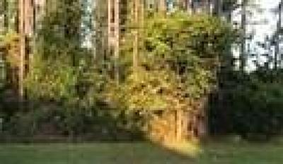 FERNANDINA Residential Lots & Land For Sale: 85107 Napeague Drive