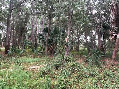 FERNANDINA Residential Lots & Land For Sale: Lot 212 (0010) Crane Drive