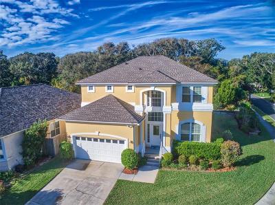 Fernandina Beach Single Family Home For Sale: 401 Georgia Avenue
