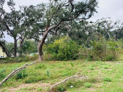 FERNANDINA Residential Lots & Land For Sale: 5003 Anthony Street