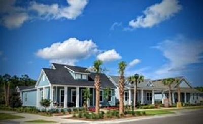 Yulee Single Family Home For Sale: 239 Daydream Avenue